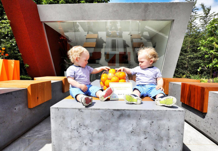 Twins Logan and Kal Smith (1) from Navan enjoy the Fruit Juice Matters Garden at Bord Bia's Bloom 2018 where 20 show gardens, 13 postcard gardens and 200 retail stands that include more than 100 food and drink exhibitors and some 30 plant nurseries are on display. The 70-acre site of stages, marquees and pavilions are hosting in the region of 150 live talks, demonstrations and family-friendly activities continues untilMonday, June 4th. Photo Fennell Photography