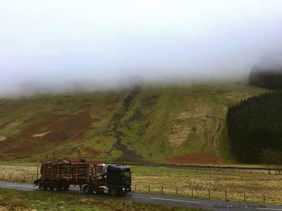 """Journey through the mist"""", taken in Lockerbie, Scotland."""