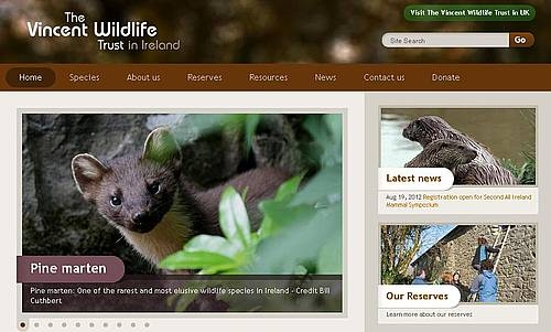 New Wildlife Website