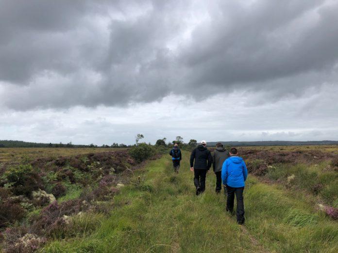 Aghrane-bog-open-day