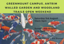 Koi Carp open weekend