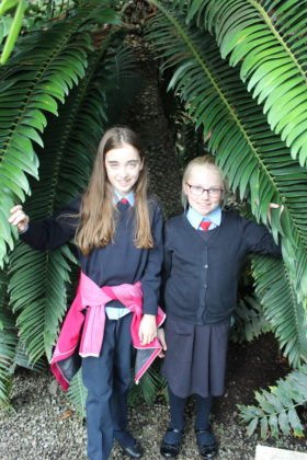 Pictured (L-R) are Emma Rose Brabazon and Lexi Owen peered between the leaves of the oldest and last known Jurassic Tree in the world, located in the Palm House of the Botanical Gardens! The students got to explore the grounds, dig in to a planting workshop, and receive new seeds to bring back to their school. The school also received a sun bubble greenhouse for their own school garden as part of their 2019 Incredible Edibles prize. Visit www.incredibleedibles.ie to register today!