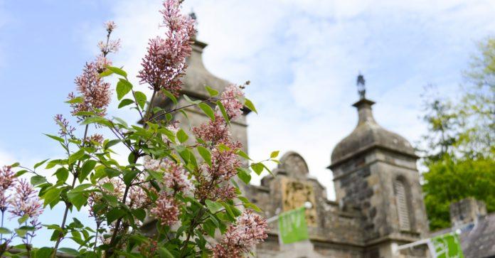 Antrim Castle image