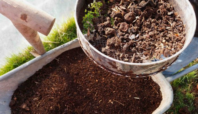 Sieving-home-made-compost-in-the-garden-2015