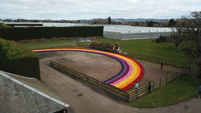 Florainbow of Hope from Scottish industry